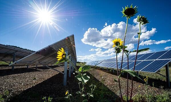 Hướng dẫn cách tính sản lượng điện mặt trời chính xác nhất
